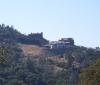 Hill Houses.jpg